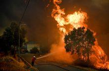 Su miškų gaisrais kovojančioje Portugalijoje suimtas 61 įtariamas padegėjas