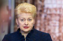 Sulaikė prezidentės D. Grybauskaitės niekintoją