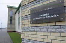 Giraitės ginkluotės gamykla negalės būti privatizuota