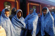 Lietuva ketina paremti JT migracijos paktą