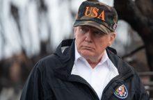 D. Trumpo komentarai apie miškų grėbimą prajuokino suomių internautus
