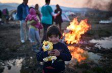 ES sumažėjo prieglobsčio prašančiųjų skaičius