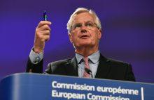 Derybininkas: Londono pasiūlymams dėl ES piliečių reikia daugiau aiškumo