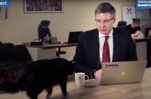 Tiesioginės transliacijos metu katė Rygos merui iškrėtė kuriozą