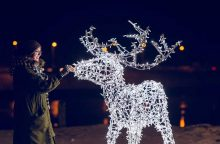 Kauniečius vilioja kalėdinė pasaka Santakos parke
