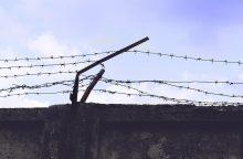 Tiriant kalinio nužudymą sulaikyta 10 asmenų