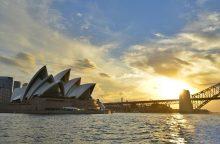Piktnaudžiauti ligos diena Australijoje tapo nacionaliniu pomėgiu