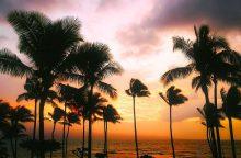 K. Bradūno dukra: gyvenimas Havajuose yra tremtis rojuje
