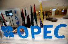 Naftos kaina: po pakilimo nuosmukis?