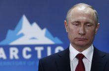 V. Putinas: už nesankcionuotus protestus būtina bausti