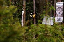 Ministras: Belovežo miškas neturėtų būti įtrauktas į UNESCO pasaulio paveldo sąrašą