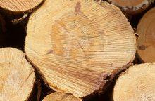 Plyniems miško kirtimams riboti – konsultacijos su visuomene