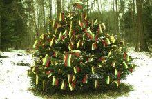 Garsi fotografė papuošė eglutę šimtu trispalvių