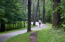 Dviračių vagys pasislėpė Vingio parke