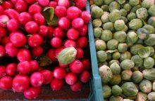 Lietuvių mėgiama daržovė padeda apsisaugoti nuo rimtų sveikatos problemų