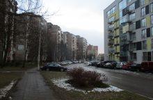 Seimas imasi Civilinio kodekso pataisų dėl daugiabučių bendrojo naudojimo objektų