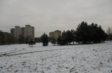 Savaitės pradžioje prognozuojamas nedidelis sniegas