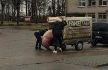 Vyrai ketino priekaboje vežti kiaulę