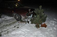 Ramus vakaras Kauno rajone baigėsi į kiemą su vartais įvažiavusiu automobiliu