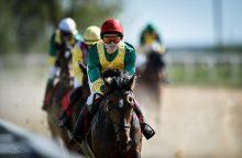 Žirgų lenktynės: 5 įdomūs faktai